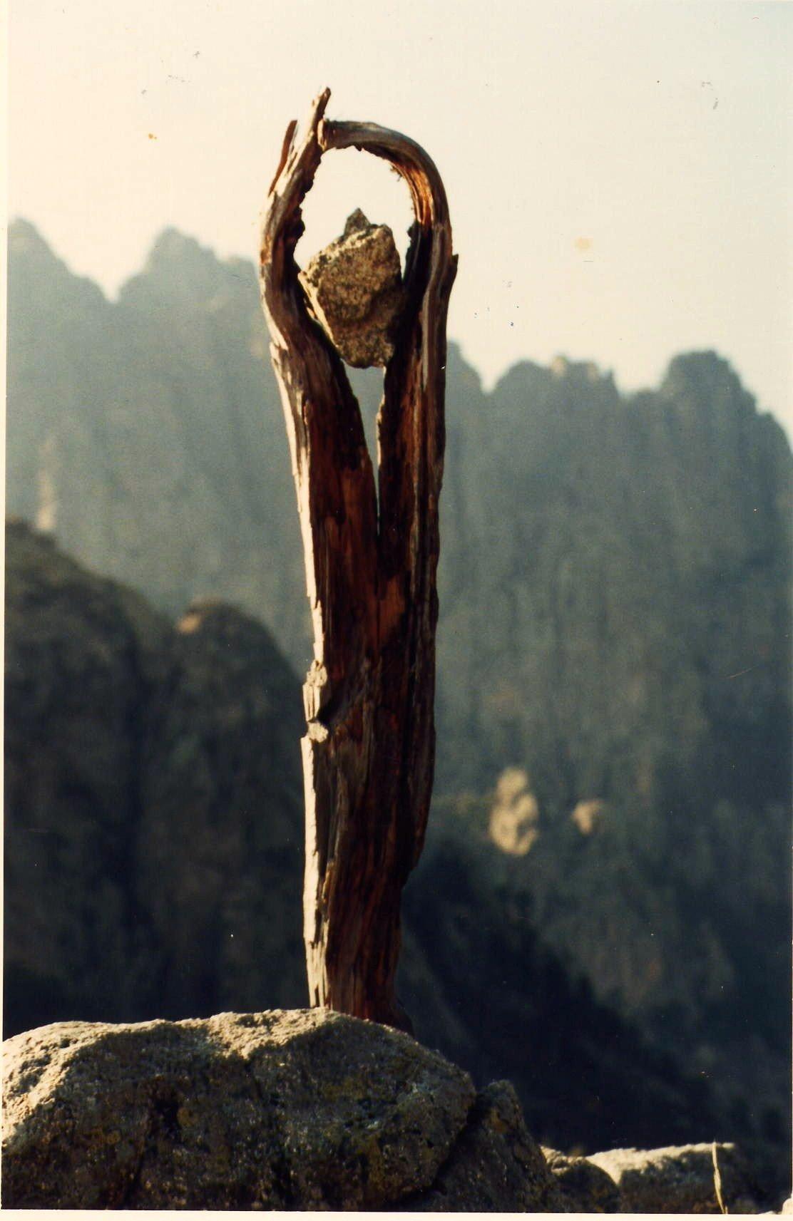 sculpture assemblage des restes d'une avalanche en Corse (pin laricio et pierre de granit) en arrière plan les aiguilles de Bavella